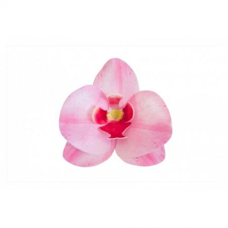Dekoracja na tort storczyk waflowy różowy 10 szt.