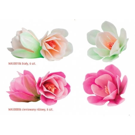 Kwiaty waflowe Magnolia biała 6 szt.