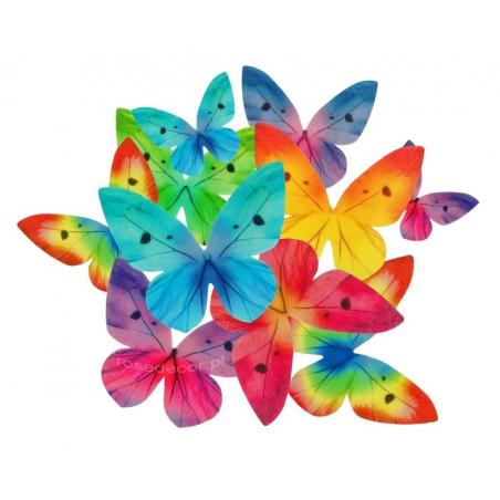 Motyle waflowe mix kolorów