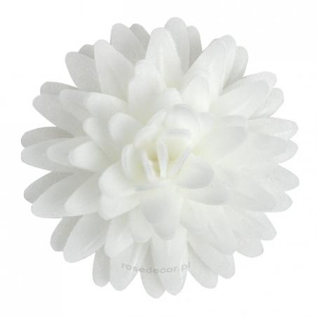 Kwiaty waflowe Stokrotka pomponikowa biała 12 szt.
