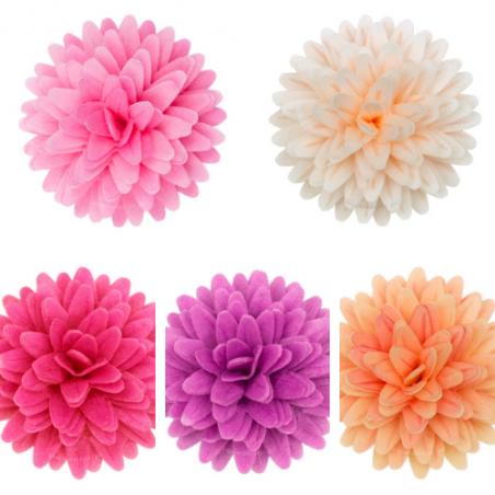 Kwiaty waflowe stokrotka pomponikowa mix 12 szt.